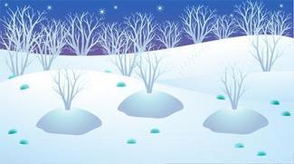 R-白木雪原.JPG